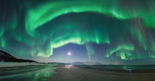 A flare up of the aurora over Steinsvik beach, in Nordreisa, Troms, Norway. It lasted no more than 10 minutes from start to finish but it lit up the entire sky and took the photographer by surprise, just as he was about to leave the shoot. The figure on the right is his brother, furiously searching for his lens cap to capture the same phenomena.