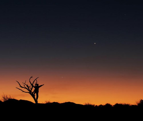 Jupiter, Venus and Mercury align against the staggering colors of the sunset and flora of the African savannah in June 2013. The bare tree and the human figure both point to one direction: Jupiter.