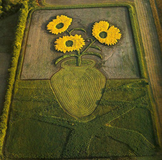 land-crop-art-by-stan-herd-3