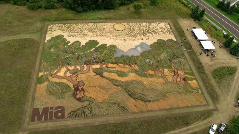 land-crop-art-by-stan-herd-5