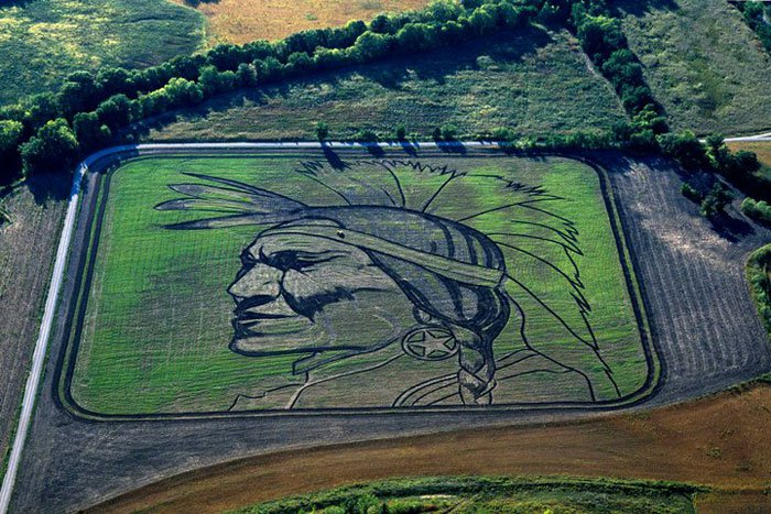 land-crop-art-by-stan-herd-6